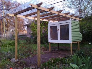 Coop with attached pergola