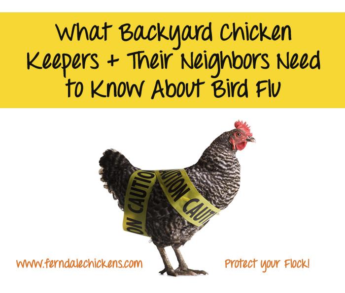 michigan bird flu avian influenza prevention