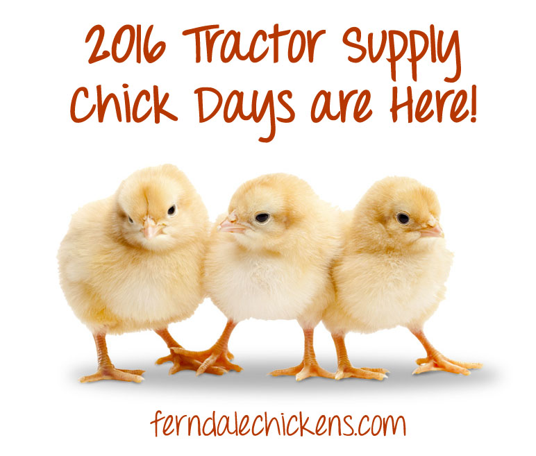 2016 tractor supply chick days michigan