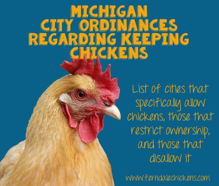 michigan-cities-that-allow-chickens